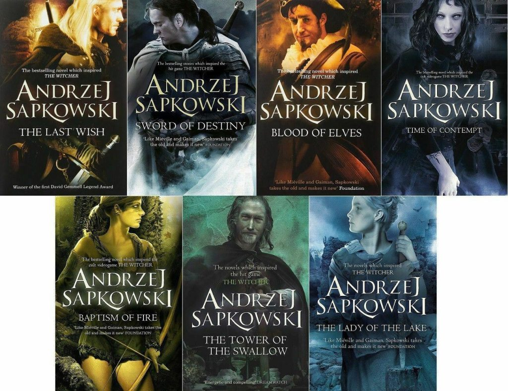 Image result for the witcher saga books